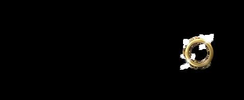The_Bachelor_usa_logo